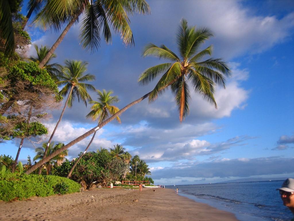 Maui Strand cc Lizenz Anja Knorr