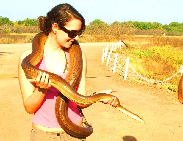 Python Australien (c) Anja Knorr