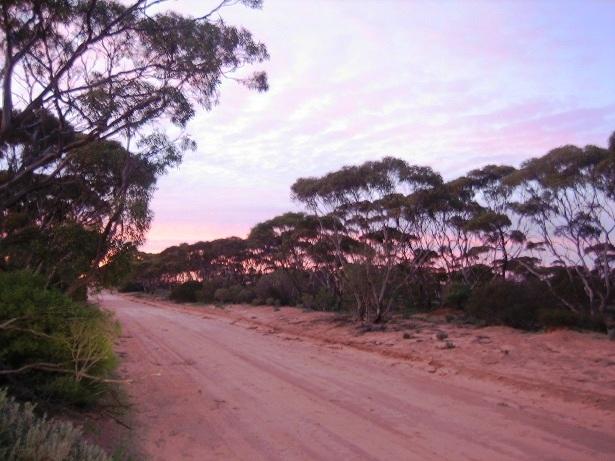Catus Point Australien Anfahrt (c) Anja Knorr