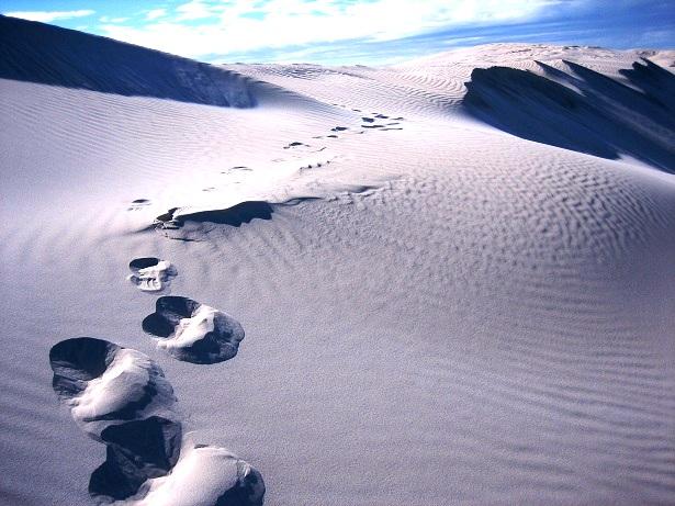 Catus Point Australien Sanddüne (c) Anja Knorr