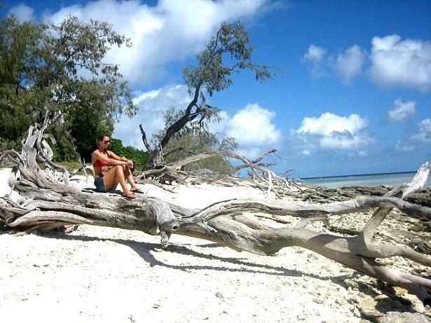 Lady-Musgrave-Island-Australien-c-Anja-Knorr