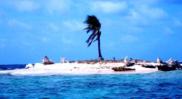 Viagra-Island-Panama-c-Anja-Knorr