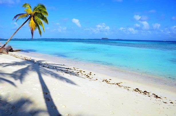 Weltreise-Kosten-Palmenstrand-c-Anja-Knorr