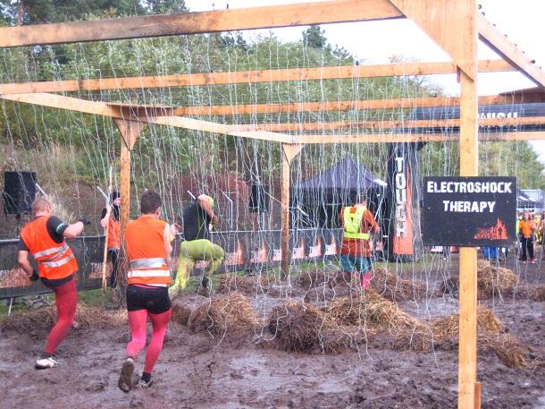 Electric Eel (c) Anja Knorr