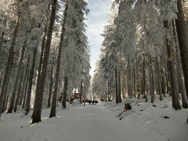 Skifahren Harz (c) Anja Knorr