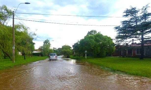Regen Uruguay (c) Anja Knorr