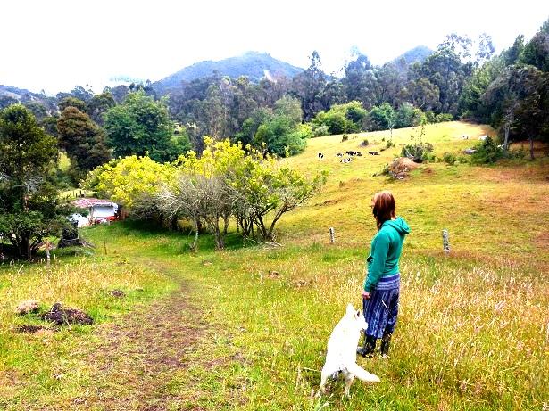Farm Kolumbien (c) Anja Knorr