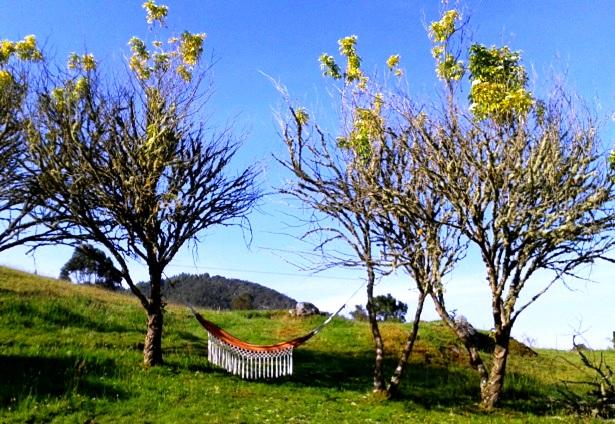 La Calera Kolumbien (c) Anja Knorr