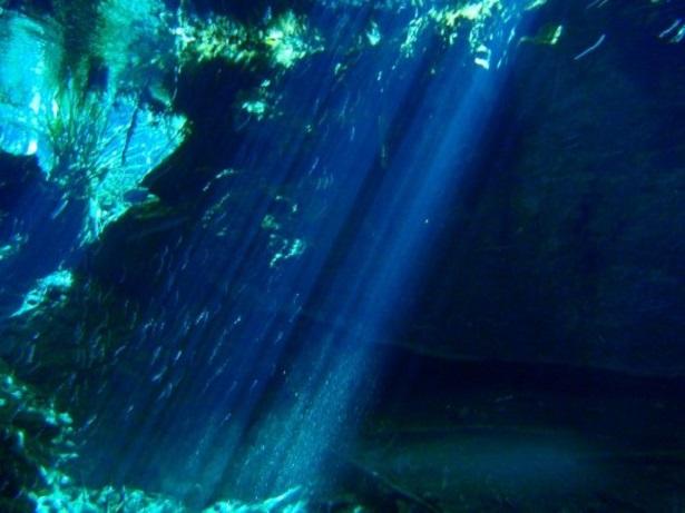 Cenote Mexiko Yucatan (c) Anja Knorr