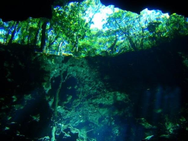 Cenote Yucatan (c) Anja Knorr