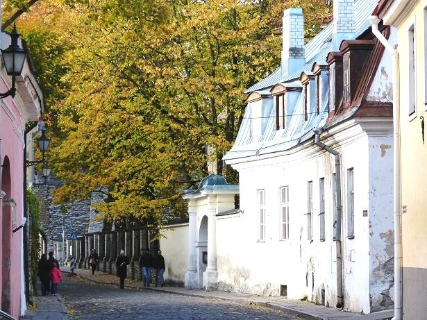 Tallinn Altstadt (c) Anja Knorr