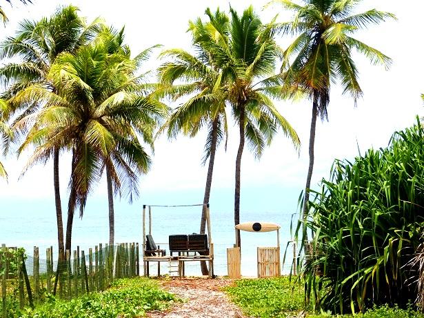 Bahia Surfcamp Brasilien (c) Anja Knorr