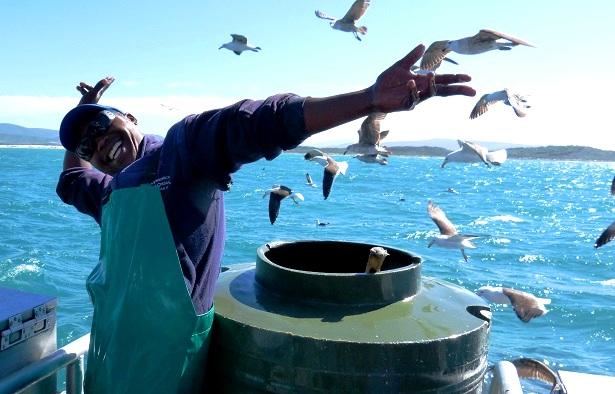 Haikäfigtauchen Südafrika (c) Anja Knorr
